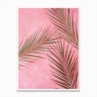 Pink Plants Canvas Print
