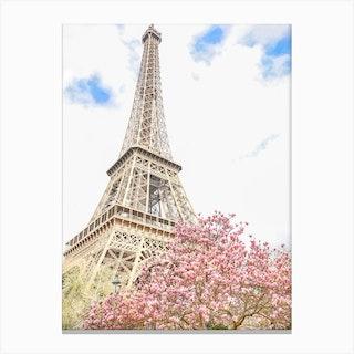 Eiffel Tower Magnolia Canvas Print