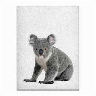 Koala I Canvas Print