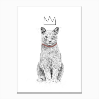 King Of Everything 2 Canvas Print