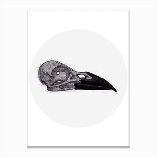 Crow Skull Canvas Print