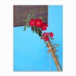 Flor De Mexico Canvas Print