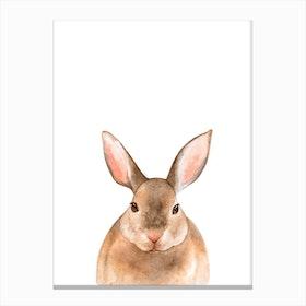Nursery Rabbit Canvas Print