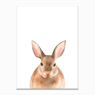 Nursery Rabbit Canvas Print