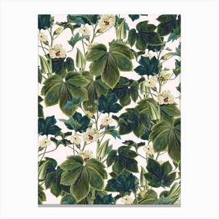 Wild Forest In Canvas Print