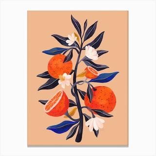 Orange Tree Canvas Print