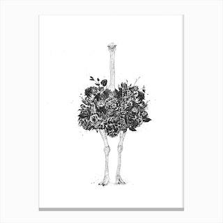 Floral Ostrich Canvas Print