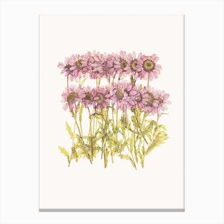 Flower II Canvas Print