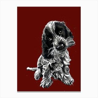 Rosie The Cocker Spaniel Canvas Print