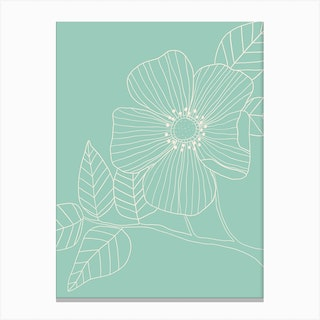 Duck Egg Blue Floral Line Drawing Canvas Print