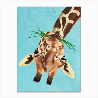 Upside Down Giraffe Canvas Print
