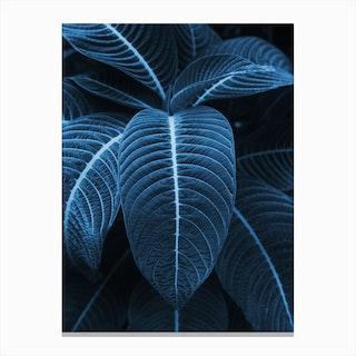 Leaf Me Alone I Canvas Print