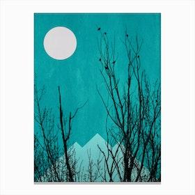 Black Forrest Canvas Print