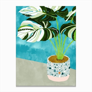 Variegated Monstera Canvas Print
