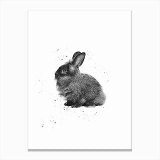 Cute Rabbit Canvas Print