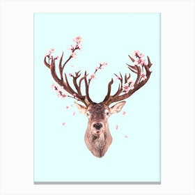 Cherry Blossom Deer Canvas Print