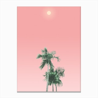 Palm Trees, Sun and Sky Canvas Print