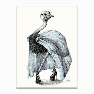 Portrait Of Lady Ostrich Canvas Print