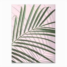 Pink & Palm Leaf Canvas Print