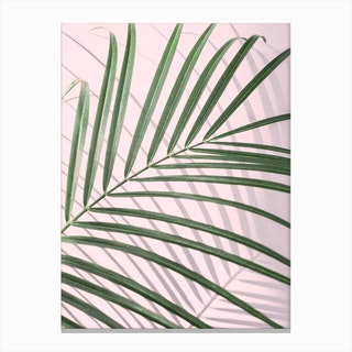 Pink & Palm Leaf Canvas Print