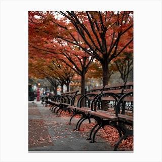 Fall Bench New York Canvas Print