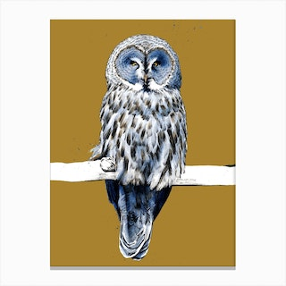 The Great Grey Owl On Burnt Gold Canvas Print