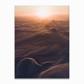 Sunset In Tundra Canvas Print