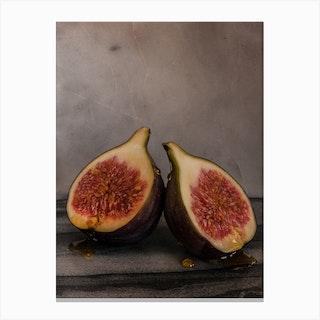 Honey Fig Canvas Print
