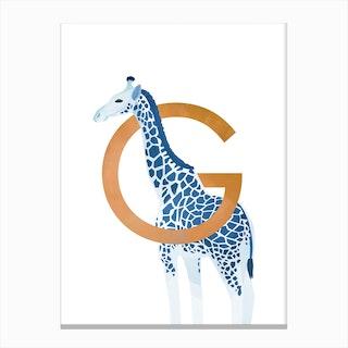 G Giraffe Canvas Print