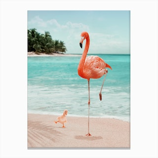 Wannabe Flamingo Canvas Print