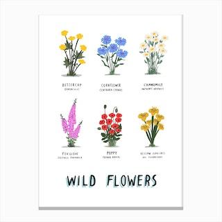 Wild Flowers Print Canvas Print