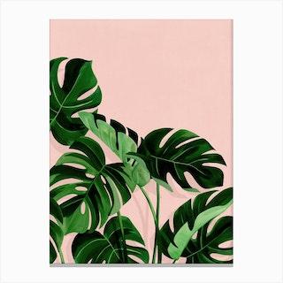 Monstera Canvas Print