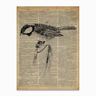 Great Tit Bird Canvas Print