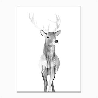 B&W Deer Canvas Print