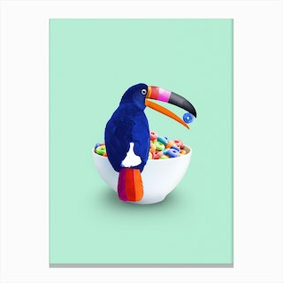 Loop Toucan Canvas Print