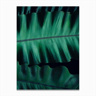 Green Velvet I Canvas Print