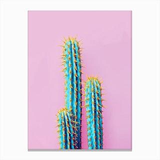 Fluro Cactus In Canvas Print