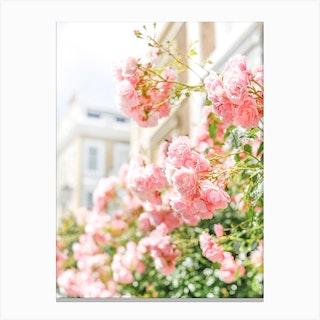 Peach Spring Blooms Canvas Print