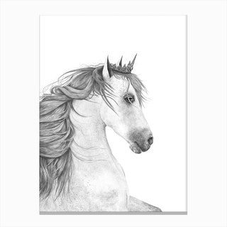 Queen Horse Canvas Print
