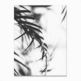 Minimalist Leaf Canvas Print