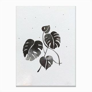 Wintermonstera Canvas Print