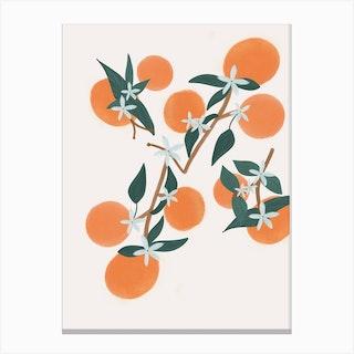 Oranges Light Cream Canvas Print