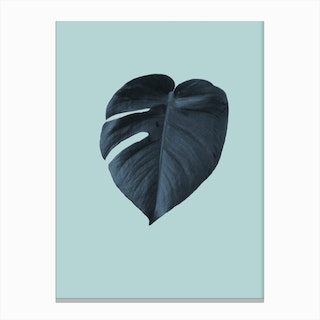 Monstera 1 Canvas Print