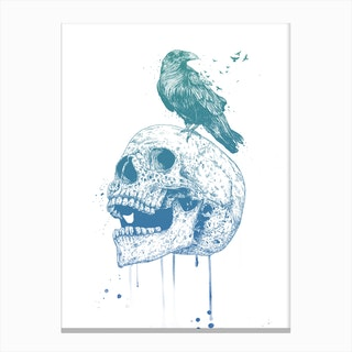 New skull Canvas Print