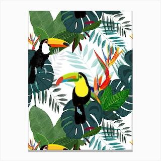 Toucan Bird Of Paradise Canvas Print