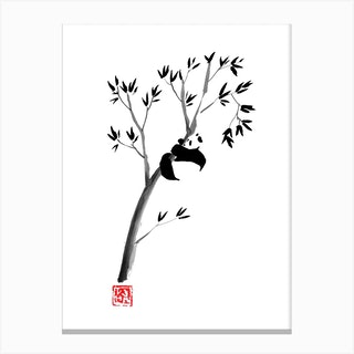 Panda In His Tree Canvas Print