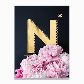 Flower Alphabet N Canvas Print