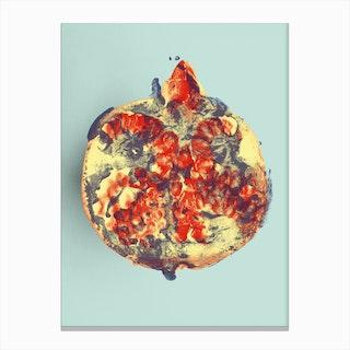Ode aux Légumes Grenade Canvas Print