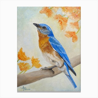 Eastern Bluebird Among Flowers Canvas Print