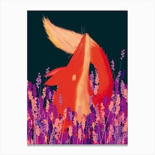 Lavender Fox Canvas Print